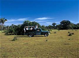 Jeep safari au Pantanal Nord