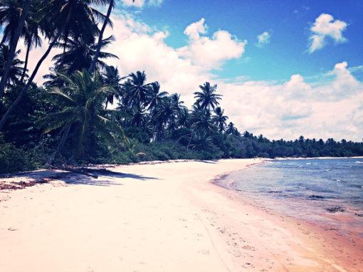 Iles de Tinharé
