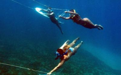 Planche sous-marine
