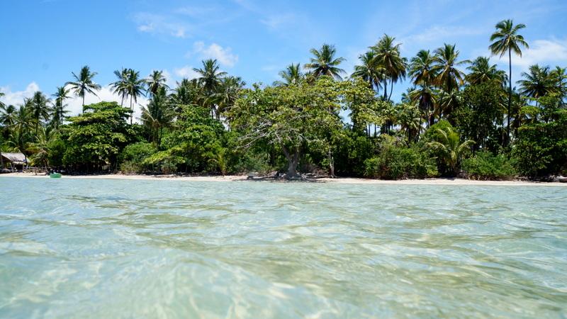 Tour de l'île en bateau